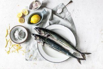 bare-biology-omega-3-fish-header-01